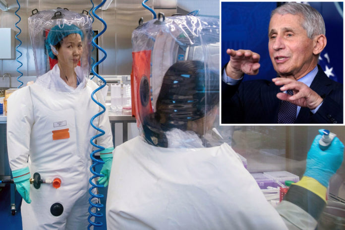 Anthony Fauci defends US funding research at Wuhan lab