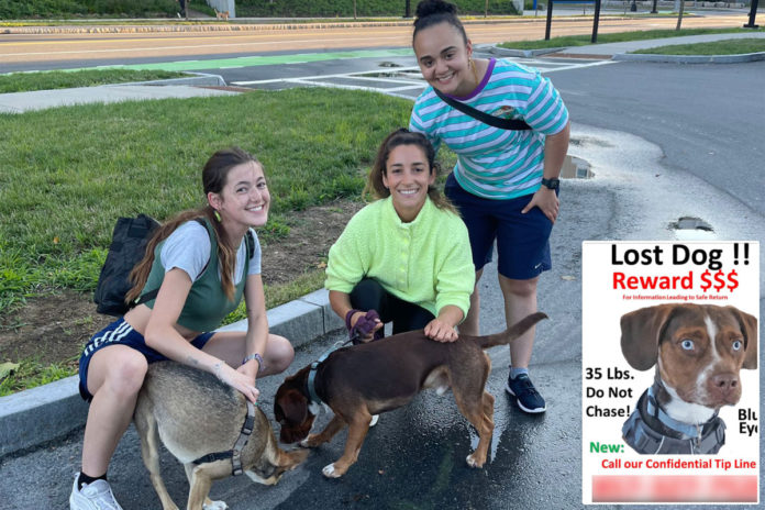 Olympian Aly Raisman reunited with missing dog after nearly a week