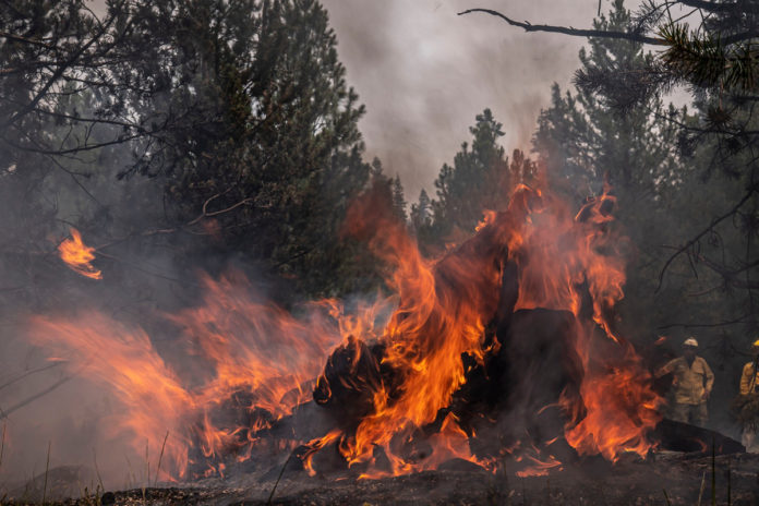 Oregon wildfire fueled by 'critically dry weather' consumes 400K acres
