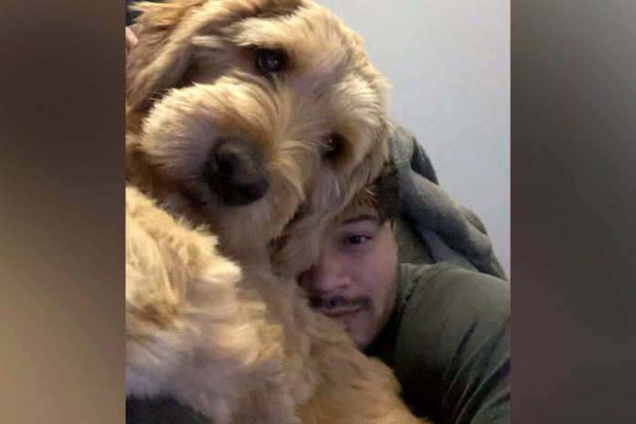 Jersey City dog Mac dies after disappearing with sitter