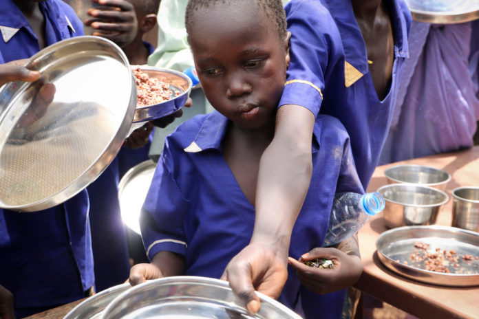 world hunger was dramatically worse in pandemic year