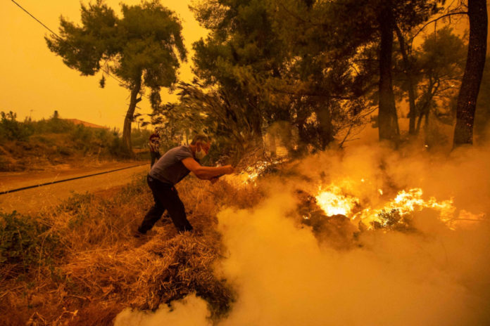 Massive wildfire on Greek island of Evia devours forests