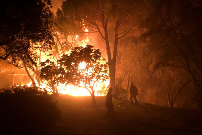 Thousands evacuated as fire sweeps through French forests