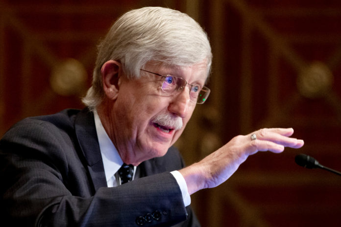No evidence Americans need COVID-19 booster: NIH director