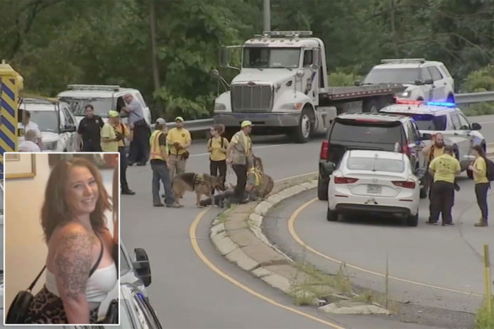 Missing woman may have been ejected through sunroof