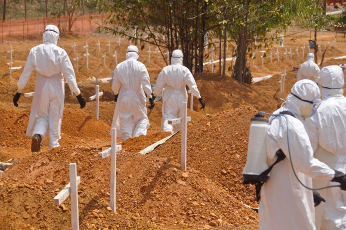 'Highly infectious' Ebola-like Marburg virus detected in Guinea