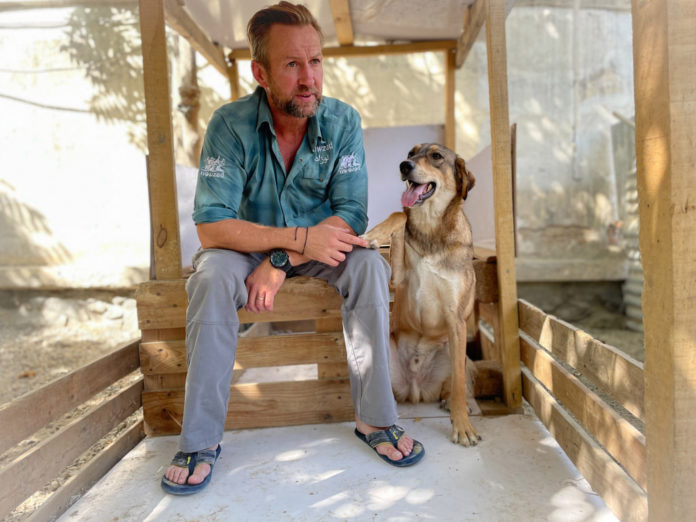 Head of animal rescue in Kabul 'depressed' over leaving staff behind