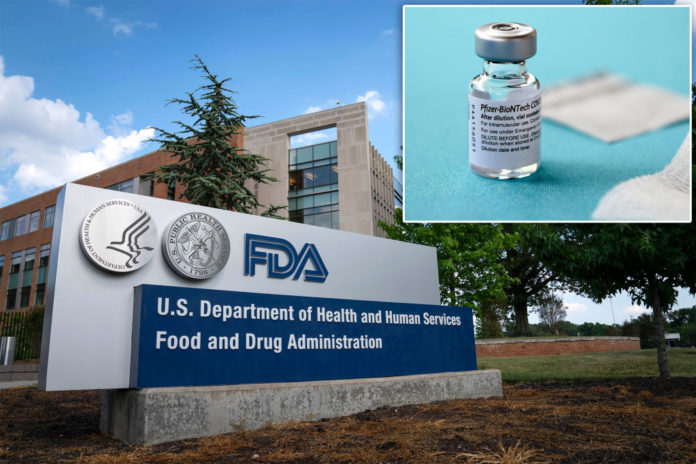 FDA expected to grant full approval of Pfizer vaccine on Monday: report