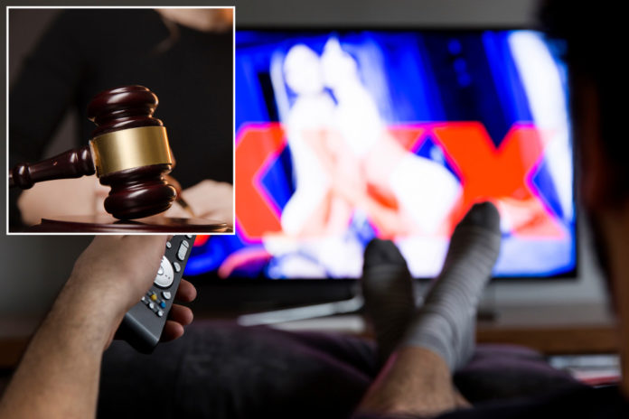 Judge orders parents to pay $45K for tossing son's porn collection