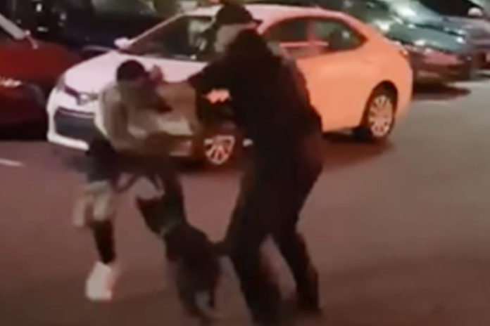 Security guard charged in dog attack outside NJ restaurant
