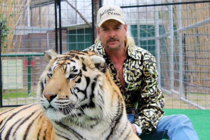 Remaining animals from 'Tiger King' zoo given up to DOJ
