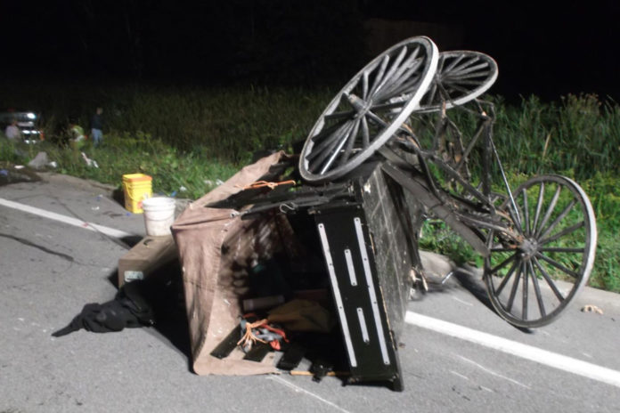 Woman critical after her Amish buggy hit by pickup truck upstate