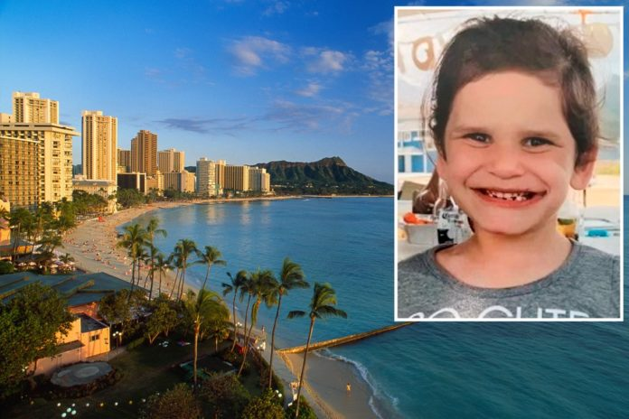 Hawaii girl, 6, missing with sweeping search underway: reports