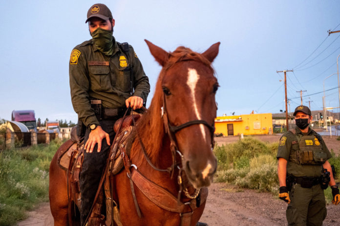 Border Patrol using wild mustangs to patrol border with Mexico