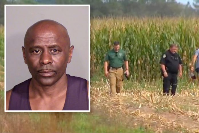 Minnesota man arrested in slayings of 4 found in cornfield