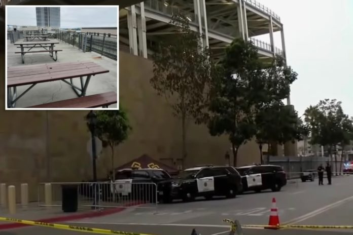 Mom jumping on Petco Park bench before fatal fall with son