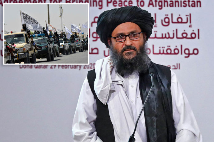 Taliban co-founder Baradar to reportedly lead new Afghan government