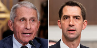 Sen. Cotton wants Dr. Fauci probe after Chinese lab funding report