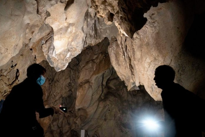 China denies WHO access to bat caves for COVID origins: report