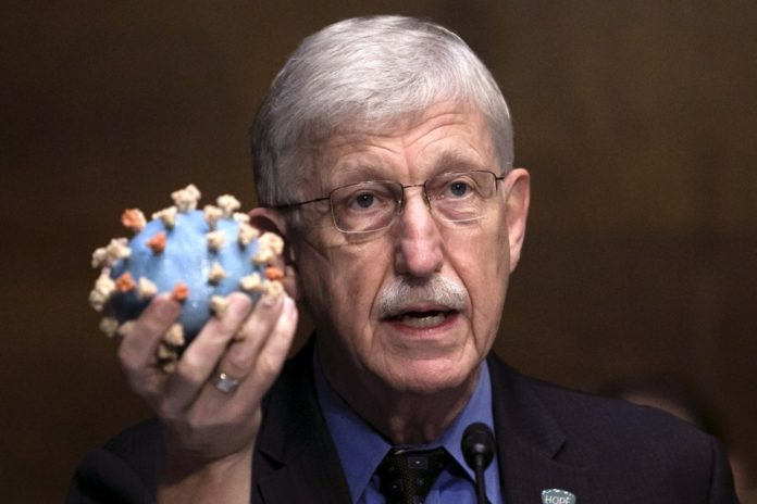 NIH director Francis Collins to step down by end of year