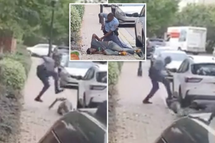 Georgia trooper stomps suspect after traffic stop, foot chase: video