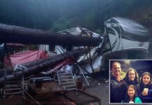 California family almost crushed by Redwood trees in storm