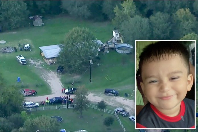 Texas toddler missing after chasing dog into the woods