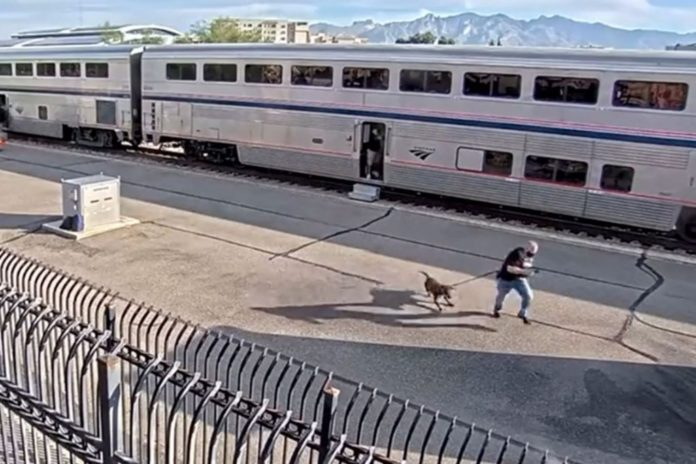 DEA agent killed, two other law officers shot on Amtrak train in Tucson